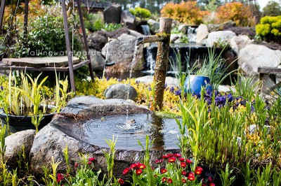 small_waterfeature
